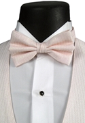 Andrew Fezza Pink 'Stardust' Bow Tie